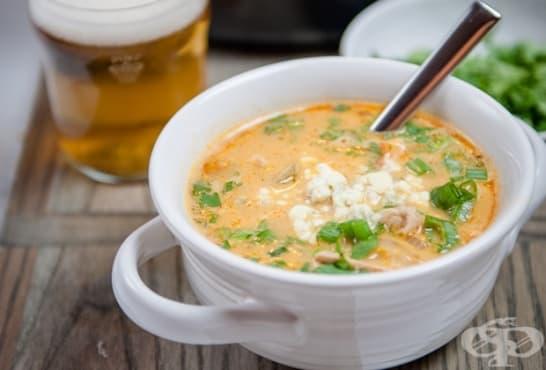 Бирена супа с пилешко месо и сирене - изображение