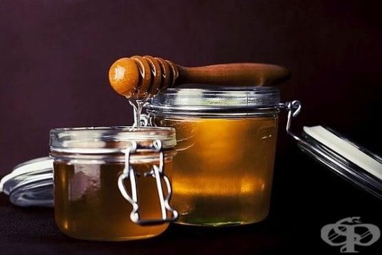 Как се прави мед от борови връхчета (боров мед) и сладко от шишарки - изображение