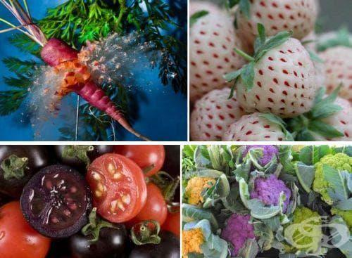 Екзотични плодове и зеленчуци (Първа част) - изображение