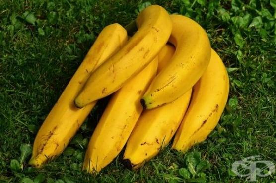 Как да съхраняваме бананите у дома, за да не почерняват бързо - изображение