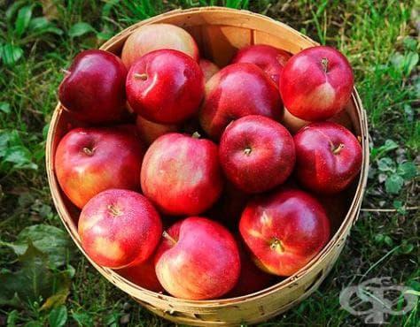 Как да съхраним свежестта на ябълките през зимата? - изображение