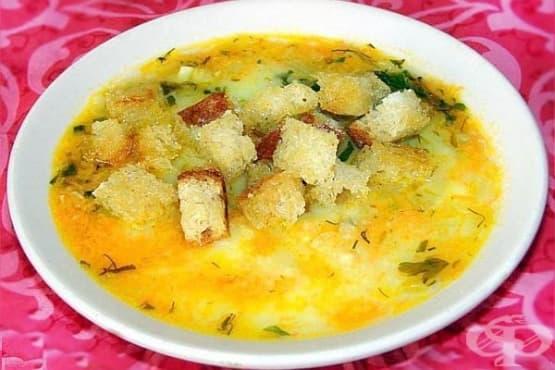 Картофена крем супа с гъби, моркови и лук - изображение