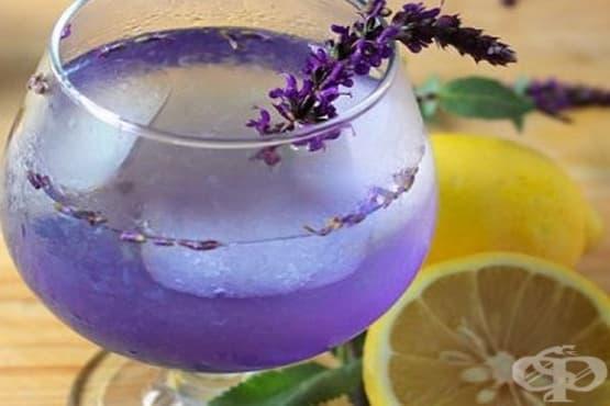 Кокосово-лавандулова лимонада - изображение