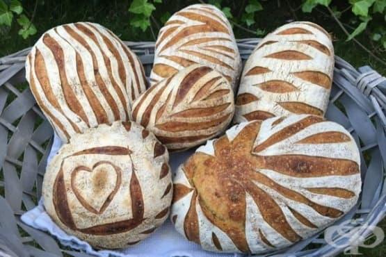 Марияна Беличовска: обичайте хляба и намирайте време да го създавате сами - изображение