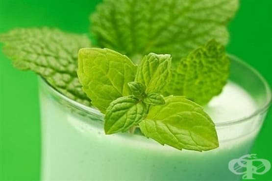 Освежаващо ментово прясно мляко - изображение