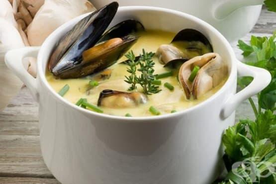 Мидена супа със сметана и бяло вино - изображение