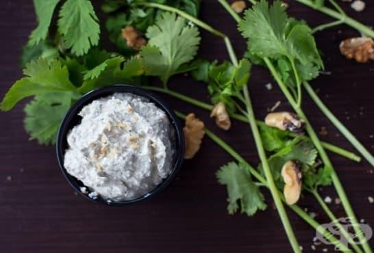 Млечен пастет с орехи и кориандър - изображение