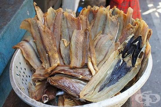 Осоляване на риба и месо. Технологията (риба) - изображение