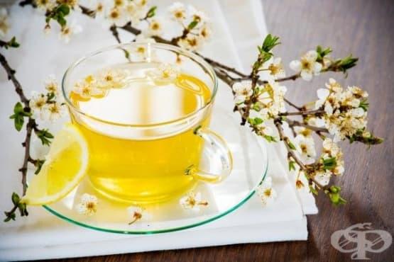 Ободряващ пролетен чай от коприва, репей, розови листа и невен - изображение