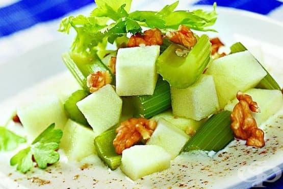 Ябълкова салата с целина и орехи - изображение