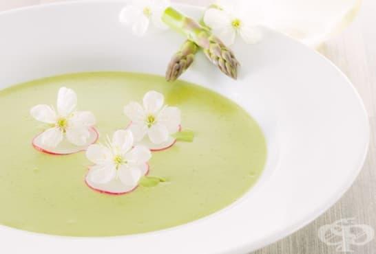 Крем супа с авокадо, аспержи и сметана - изображение