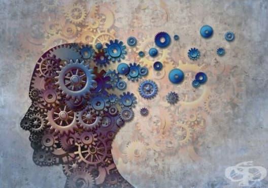 12 признака, които помагат за диагностициране на деменция - изображение
