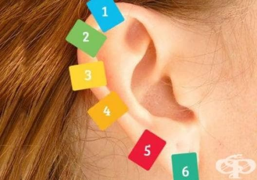 Подобрете здравето на организма с масаж по ушите - изображение