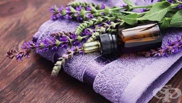 Елиминирайте гъбичките по ноктите на краката с масло от лавандула и чаено дърво - изображение