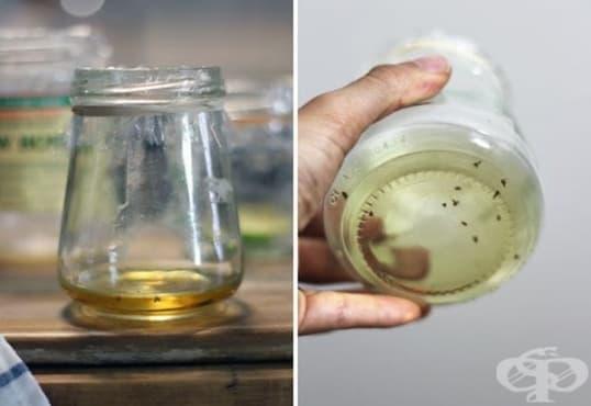 Направете си капан за плодови мушици от лучени люспи и ябълков оцет - изображение