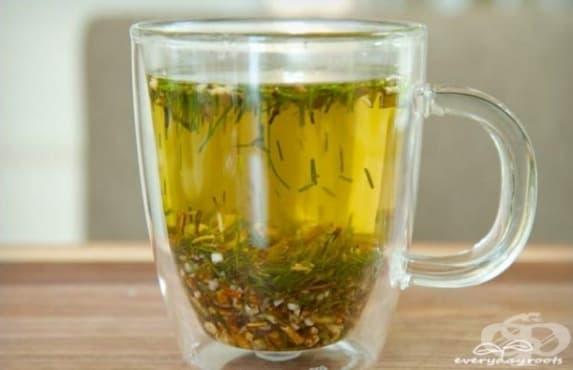 Елиминирайте излишните течности в организма с чай от хвощ и глухарче - изображение