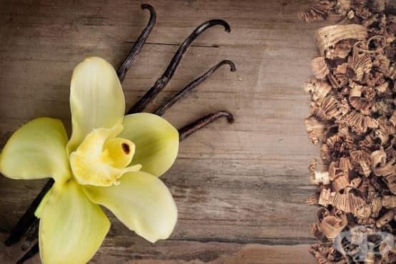 Пригответе си парфюм с аромат на ванилия и сандалово дърво - изображение