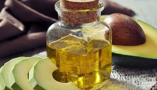 4 ползи от маслото от авокадо за здравето - изображение