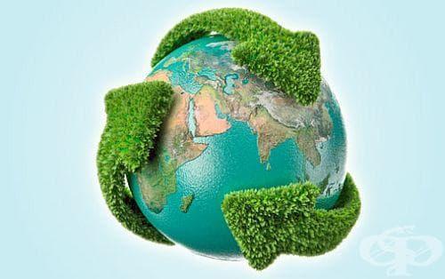 17 екологични навика, които всеки трябва да придобие - изображение