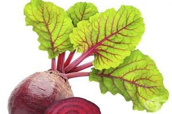 Предотвратете косопада с листа от червено цвекло - изображение