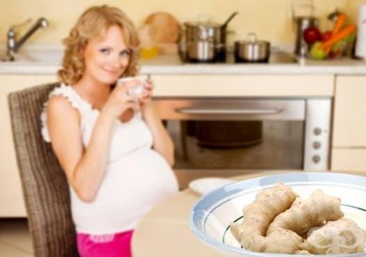 10 причини да включите джинджифил в менюто си по време на бременност     - изображение
