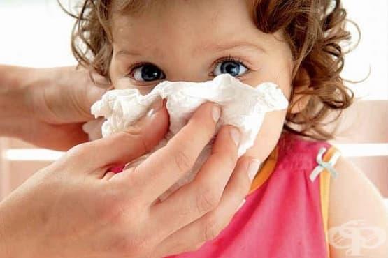 7 съвета как да реагирате при кръвотечение от носа на детето - изображение