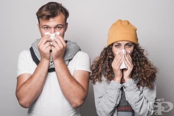 Облекчете алергиите с 4 етерични масла - изображение