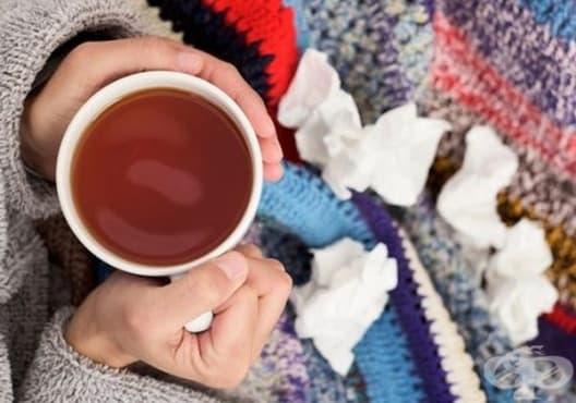 Облекчете кашлицата с чай от копър и женско биле - изображение