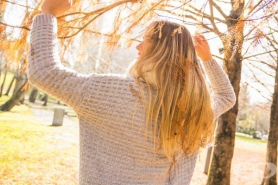 Стимулирайте растежа на косата с 4 билки - изображение