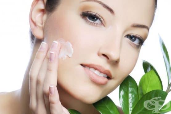 Направете си подхранващи крем и олио за лице с тамян, смирна, кокосово, арганово и конопено масла и витамин Е - изображение