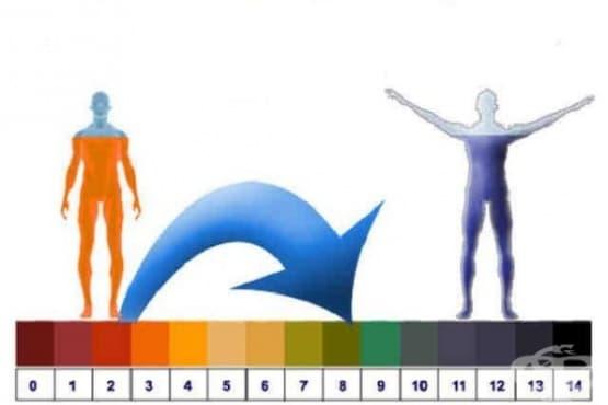 Следвайте тези 4 съвета как да балансирате нивата на pH в тялото си - изображение