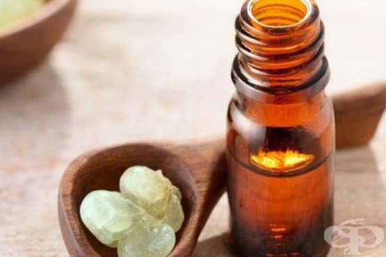 Подобрете цялостното си здравословно състояние с 5 от най-добрите и ефективни етерични масла, прилагани в холистичната терапия - изображение