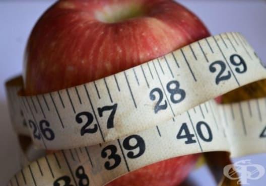 5 храни, които трябва да избягвате, ако искате да отслабвате - изображение