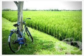 С колело или пеша се придвижваме икономично и екологично - изображение