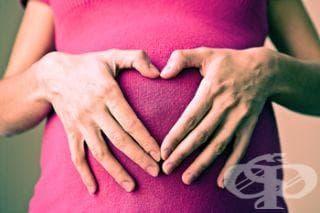 Ако планирате бременност, подсилете собствения си организъм - изображение