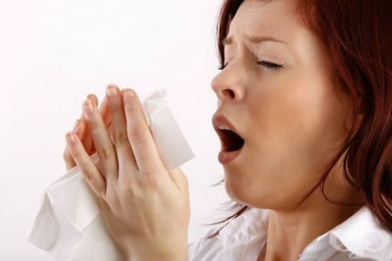 Консумирайте чай от джинджифил, канела и карамфил срещу алергичен ринит - изображение