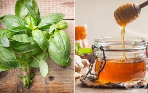 При често уриниране консумирайте мед и босилек    - изображение