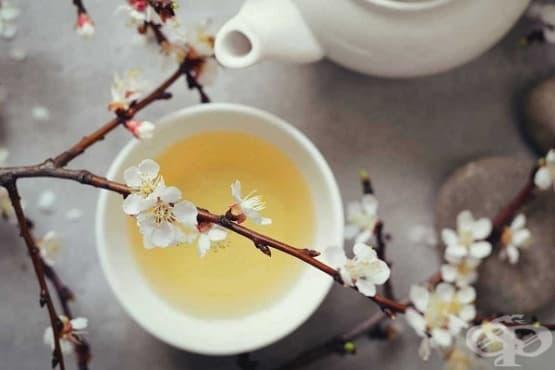 Пийте бял чай за мозъка, сърцето и метаболизма - изображение