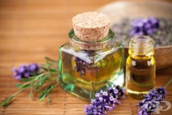 Заличете бръчките и първите признаци на стареене по кожата с домашен серум от витамин Е и етерични масла - изображение