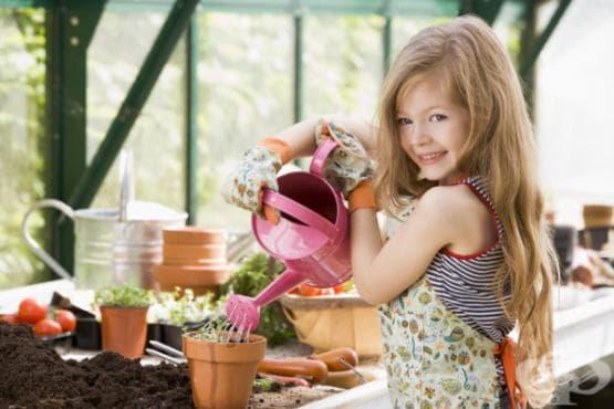 Градинарството изгражда ценности у децата и ги прави по-здрави - изображение