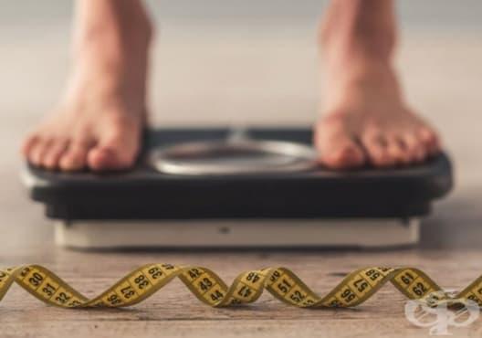 Избягвайте 6 малки грешки, които могат да възпрепятстват загубата на телесно тегло - изображение