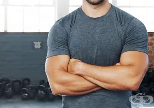 Изградете мускулна маса, без да вредите на здравето, по 3 начина - изображение