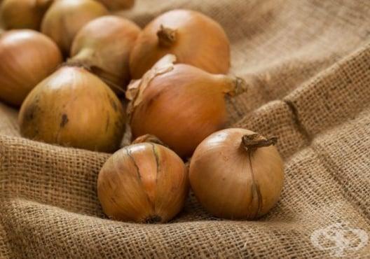 Излекувайте кашлицата по 3 народни рецепти с лук - изображение