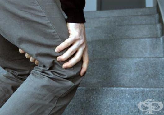 Облекчете болките в гърба и колената с акупресура - изображение