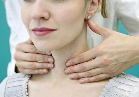 Как да поддържаме здрава щитовидна жлеза? - изображение