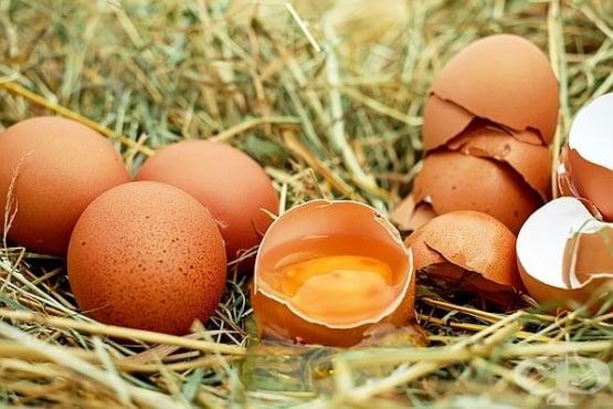 Как да разберем пресни ли са яйцата - изображение