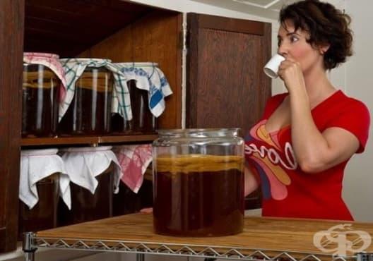 Как да си приготвим чай от Комбуча? - изображение