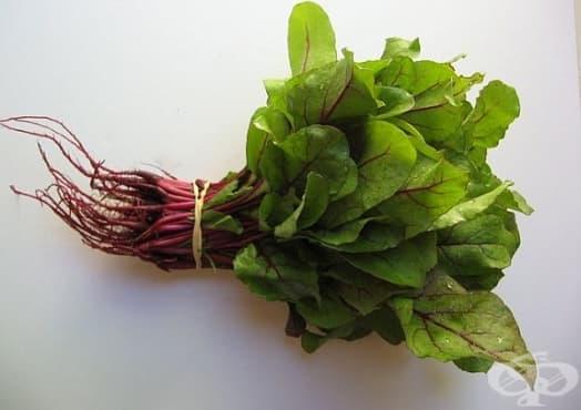 Как може да си замразим листа от червено цвекло? - изображение