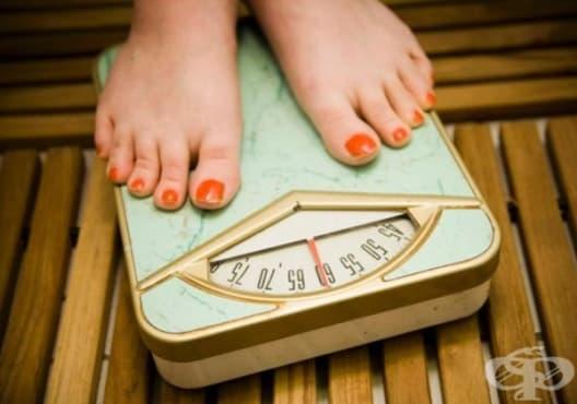 Каква е причината да не отслабваме дори когато се храним правилно? - изображение
