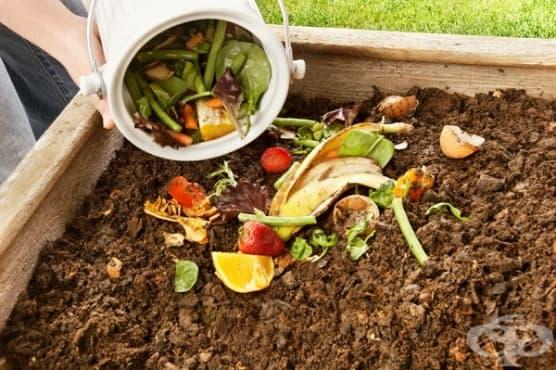 Как да приготвите домашен компост за растенията - изображение